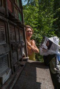 SUMM - Eine Abenteuerreise ins Bienenland - Am Bienenstock